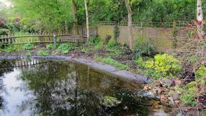 Communal Pond Site – Upgrade