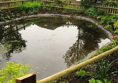 Communal Pond Site - Upgrade