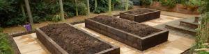 organic garden design derby