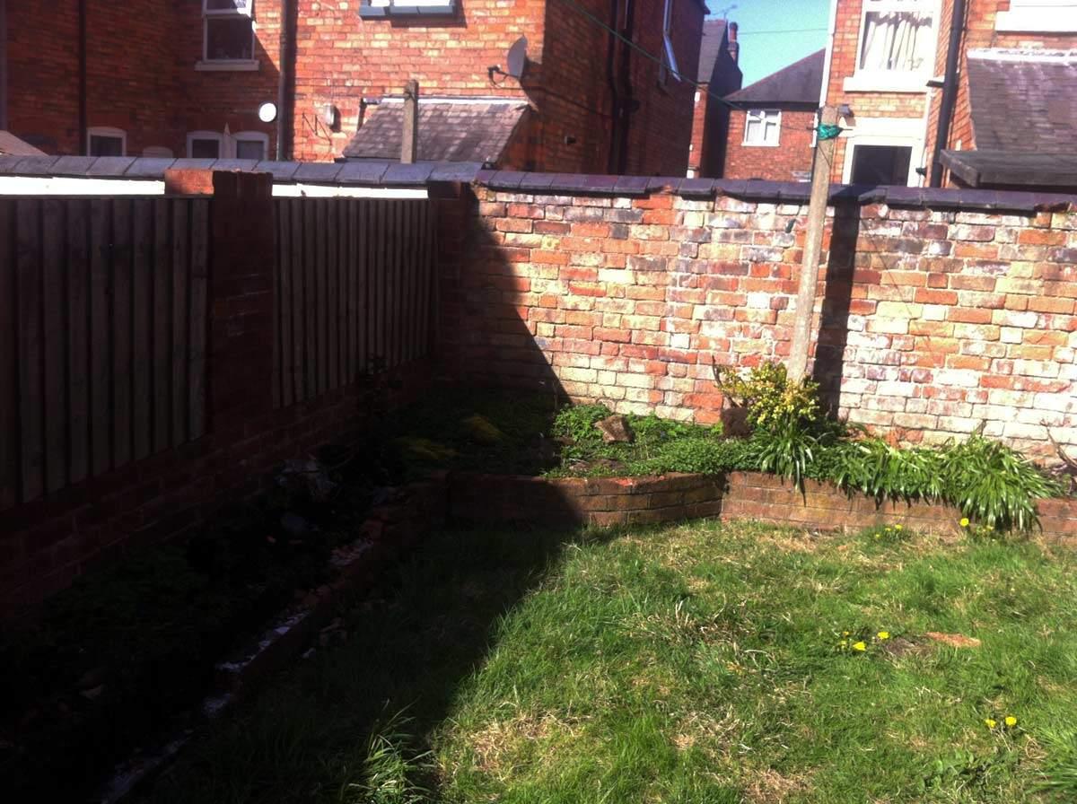 Terrace Garden Transformation