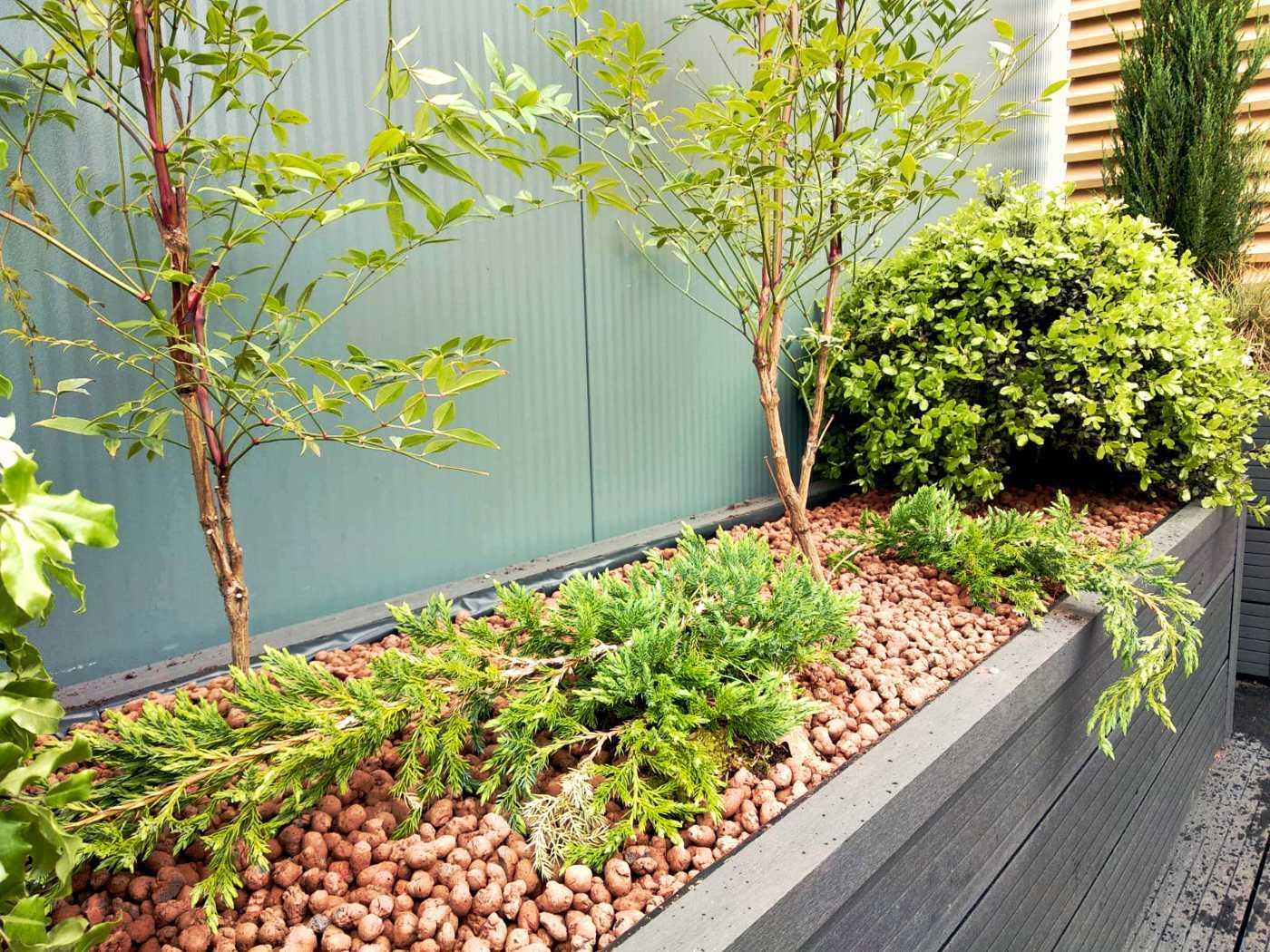 Willowbrook - Commercial Roof Garden